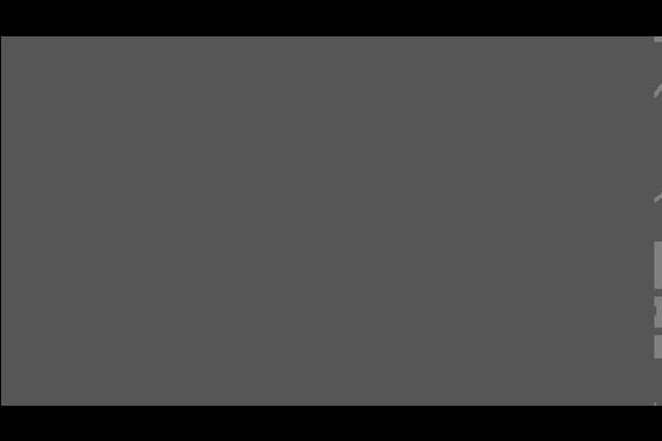 SSN - TEIXEIRA MENDEZ CONTADORES